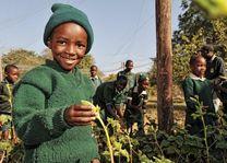 African Bush Camp Foundation - Zimbabwe