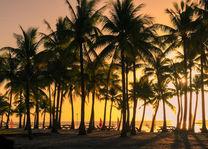 - foto: Bohol Beach Club
