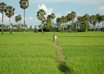 Cambodja - Kep - boer op het platteland - foto: Daniel de Gruiter