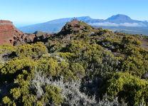 Cirques uitzicht - Réunion - foto: Vincent Kösters