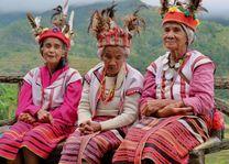 Cordillera - Banaue - stam - Filipijnen - Intas - CTTO