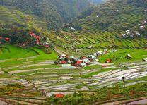 Cordillera - huisjes tussen de rijstterrassen - Filipijnen - Intas - CTTO - foto: Intas