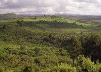 Ethiopië - landschap - Bale Mountains - foto: flickr