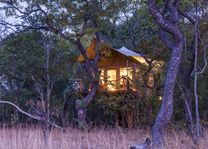 Fig Tree Bush Camp - tent exterior - Kafue National Park - Zambia - foto: Fig Tree Bush Camp