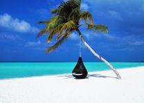 Hangstoel - Relaxen - Palm - Malediven - foto: Canva