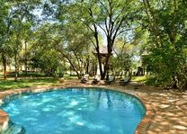 Ivory Lodge - pool area - Hwange - Zimbabwe - foto: Ivory Safari Lodge