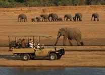 Kafunta River Lodge - gamedrive - South Luangwa - Zambia - foto: Kafunta River Lodge