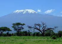 Kilimanjaro - landschap - savanne - Kenia - foto: pixabay