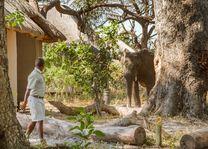 - foto: Kwando Lagoon Camp