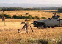 Lalibela Game Reserve - Zuid-Afrika - foto: Lalibela Tree Tops