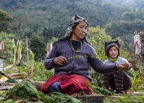 Limboo tribe - handwerk - Sikkim - India