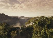 OneOnly Nyungwe House - landschap - Rwanda - foto: Nyungwe House