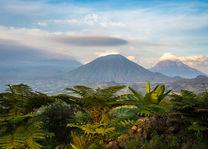 Volcanoes National Park - Rwanda - foto: Sabyinyo Silverback Lodge