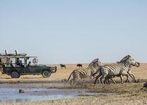 San Camp - zebra's - Makgadigadi - Botswana - foto: San Camp