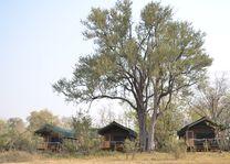 Sango Safari Camp - tenten - Khwai - Botswana - foto: Sango Safari Camp