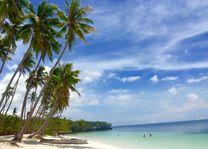 strand met palmbomen - Siquijor - Filipijnen - Intas - CTTO - foto: Intas