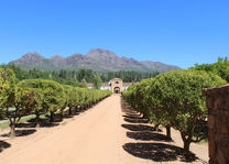 Waterford Wine Estate in Stellenbosch - Zuid-Afrika