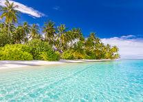 Strand - Paradijs - Malediven - foto: lokale agent