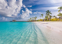 Strand - Palmen - Malediven - foto: lokale agent