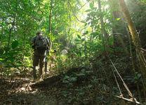 Thailand - Khao Sok National Park - jungle trekking - foto: Elephant Hills