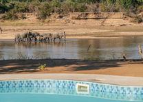 Time Tide Mchenja - zwembad - South Luangwa - Zambia - foto: Time Tide Mchenja