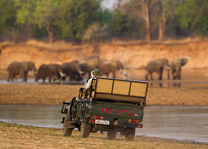 Time Tide Nsolo - gamedrive - South Luangwa - Zambia - foto: Time Tide Nsolo