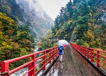 Trekking - Natuur - Japan