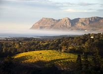 Wijnlanden - Zuid-Afrika - foto: South African Tourism Board