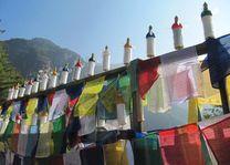 gebedsvlaggen in Taksang - Taksang - Bhutan - foto: Mieke Arendsen