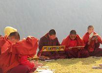 studerende nonnen bij Punakha - Punakha - Bhutan - foto: Mieke Arendsen