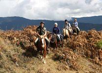 Paardrijden in groep, Bumthang - Bumthang - Bhutan - foto: Lokale agent