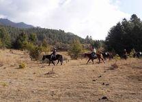 paardrijden in de Bumthang vallei (1) - Bumthang - Bhutan - foto: Sonam Loday