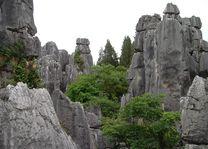 Stenen Woud - Kunming - China