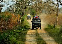 Jeeptocht in het Kaziranga National Park - Kaziranga NP - India - foto: archief