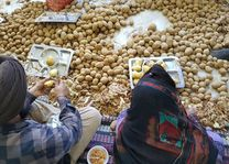aardappels schillen gurudwara - Delhi - India - foto: Mieke Arendsen