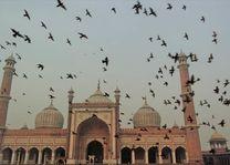 Jama Masjid moskee Delhi - Delhi - India - foto: Mieke Arendsen