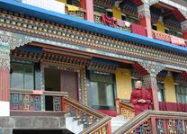 Rumtek monastery met monnik - Sikkim - India - foto: Mieke Arendsen