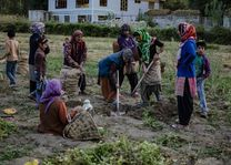 landarbeiders in Ladakh - Ladakh - India - foto: Ashfaq Rah