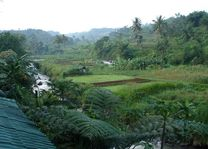 uitzicht - GG House - Happy Valley - Bogor - Indonesië