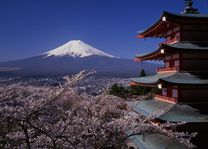 Mount Fuji en de Chureito Peace Pagoda - Mount Fuji - Japan - foto: lokale vertegenwoordiging