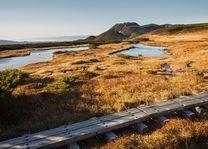 omgeving van Daisetsuzan National Park - Daisetsuzan National Park - Japan - foto: Petr Meissner