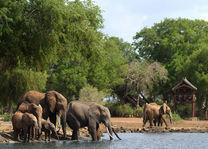 satao camp - Satao Camp - Tsavo East - Kenia