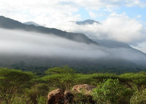 Tsavo West landschap - Tsavo West - Kenia