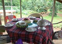 Laos - Bolaven Plateau - lokale lunch op de koffieplantage