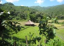 uitzicht vanaf Kamu Lodge - Kamu Lodge - Laos