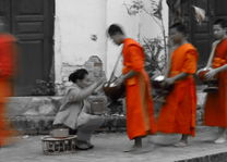 Alms giving in Luang Prabang - Luang Prabang - Laos