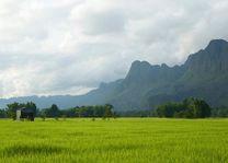 rijstvelden en bergen - Laos - foto: Archief