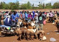 lokale markt - Karatu - Tanzania - foto: Martijn Visscher