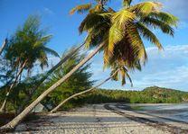 strand tijdens Nosy Be Cruise - Nosy Be - Madagaskar