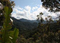 Landschap Ranomafana - Ranomafana - Madagaskar - foto: Martijn Visscher